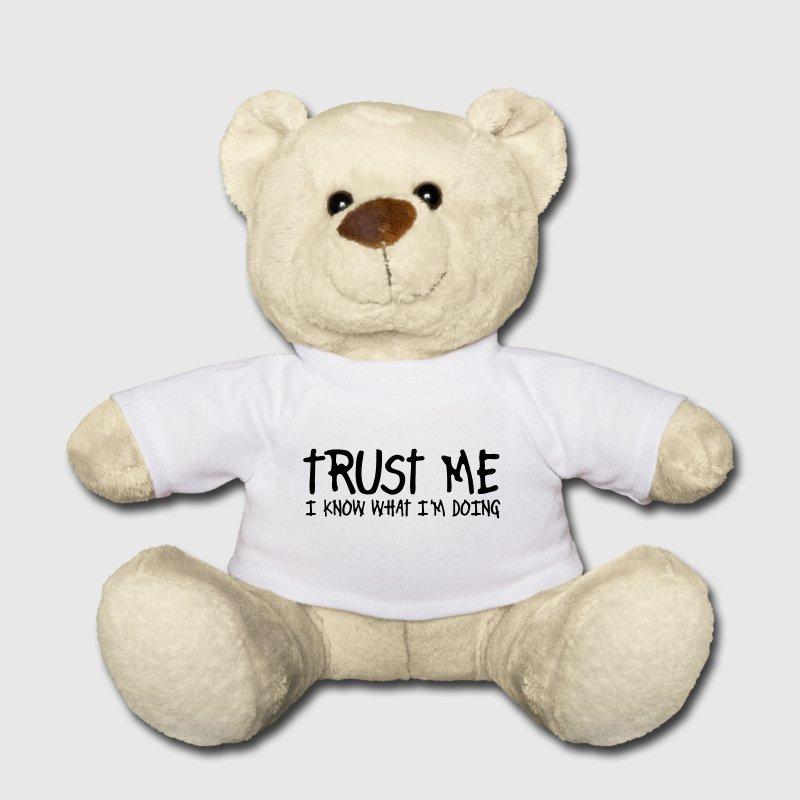 trust-me-i-know-what-i-am-doing-teddies-teddy-bear